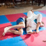 another armbar - mixed judo
