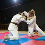 Competitive mixed judo